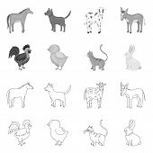Vector Illustration Of Breeding And Kitchen Logo. Collection Of Breeding And Organic Stock Symbol Fo poster