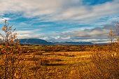 Iceland Plain Landscape View With Field In Reykjavik. Autumn Landscape Of Plain Thingvellir. Weather poster