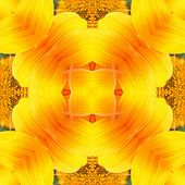Seamless Symmetrical Pattern Abstract Yellow Flower Texture poster