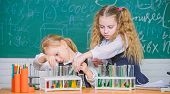 At Chemistry Classroom. Small Schoolgirls Learning Chemistry During School Time. Little Pupils Holdi poster