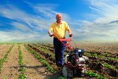 Man Works In The Field With Help Of The Motor Cultivator