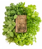 foto of recipe card  - vintage recipe book with variety fresh herbs over white background - JPG