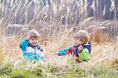 picture of bulrushes  - Two little sibling boys fighting and having fun with bulrush near forest lake nature on cold spring or autumn day - JPG