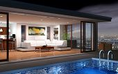 picture of house plants  - A modern house with pool and beautiful view - JPG