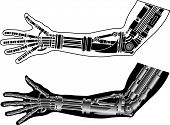 image of cybernetics  - cybernetic hand with stencil - JPG