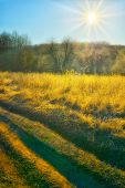 picture of groundwater  - Autumn sun over the field of road - JPG
