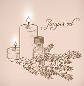 stock photo of juniper-tree  - Illustration of juniper essential oil and candles - JPG
