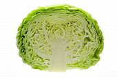 image of half  - Cabbage cut in half isolated on white background - JPG