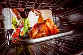 stock photo of oven  - Housewife prepares roast chicken in the oven - JPG