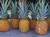 Pineapples at a Roadside Market in Hawaii