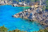 image of shoreline  - grey rocks and green plants by Capo Testa shoreline Sardinia - JPG
