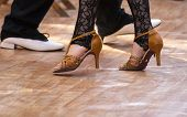 Постер, плакат: Two Tango Dancers Passion On The Floor