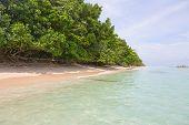image of deserted island  - Deserted Zapatilla islands on the archipelago Bocas del Toro - JPG