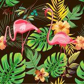 image of flamingo  - EXOTIC FLAMINGO PATTER  - JPG