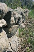 picture of martha  - Stone fence on Martha - JPG