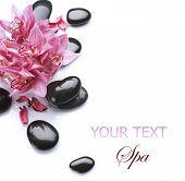 stock photo of massage therapy  - Spa border design - JPG