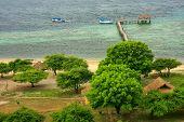Coastline Of Kanawa Island In Flores Sea, Nusa Tenggara, Indonesia. Kanawa Island Is Within The Komo poster