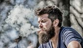 Man Long Beard Relaxed With Smoking Habit. Man With Beard Breathe Out Smoke. Clouds Of Flavored Smok poster