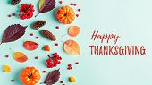 Happy Thanksgiving Greeting Card With Leaves, Pumpkins, Rowan Berries On Mint Background. Fall, Than poster
