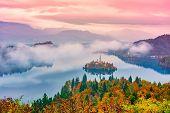 Amazing Autumn Scenery Of Lake Bled At Sunrise, Slovenia poster