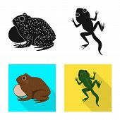 Vector Design Of Wildlife And Bog Sign. Collection Of Wildlife And Reptile Stock Vector Illustration poster