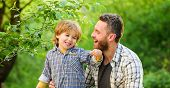 Feed Your Baby. Natural Nutrition Concept. Dad And Cute Toddler Boy Having Lunch Outdoors. Child Car poster