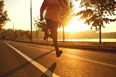 Runner Runs On The Road In The Sun At Sunset In An Autumn Park. poster