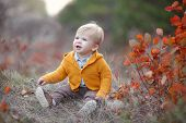 Adorable Kid Having Fun On Beautiful Autumn Day. Happy Child Playing In Autumn Park. Kid Gathering Y poster