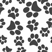 Vector Icon Animal Paw Imprint. Paw Illustration Seamless Pattern On A White Background. poster