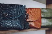 Fashion Trend Snakeskin Python Print Handbags On Shelf In A Store, Shop. Fall, Autumn Sale, Trend,   poster