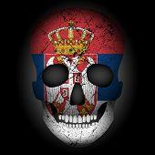 Skull Flag Serbia On A Black Background. Vector Illustration. poster