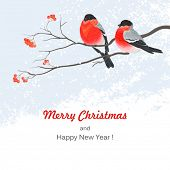 Christmas greeting card with bullfinches and rowan branches, vector illustration.
