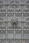 Wrought Iron Door With Lion