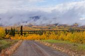 Small Dirt Road Golden Taiga Fogs Yukon Canada