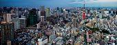 foto of kanto  - Tokyo city view visible on the horizon - JPG