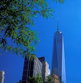 picture of freedom tower  - New York City  - JPG