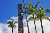 foto of tiki  - Tiki god and palm trees in Hawaii - JPG