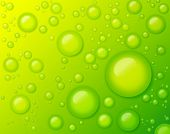 foto of purity  - Water Drops on Green Background Abstract - JPG