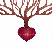 image of beating-heart  - Abstract tree with roots of heart shape and normal heart beat rhythm - JPG