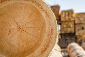 foto of lumber  - Dry woodpile of cut lumber ready for forestry industry