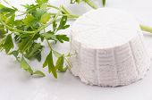 picture of italian food  - Ricotta cheese food traditional Italian  on a white background - JPG