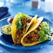 picture of cilantro  - vegan lentil tacos with cilantro and guacamole on the side - JPG