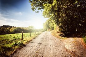 image of sunny season  - Beautiful autumn landscape with country road at sunny day - JPG