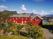picture of lofoten  - Lofoten village Kabelvag with typical red houses - JPG