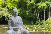 image of gautama buddha  - Buddha statue situated in a lake covered by lotus flowers in the arboretum in Szeged - JPG