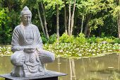 picture of gautama buddha  - Buddha statue situated in a lake covered by lotus flowers in the arboretum in Szeged - JPG