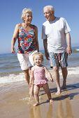 stock photo of grandparent child  - Grandparents And Granddaughter Walking Along Beach - JPG