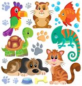 pic of petting  - Pets theme collection 1  - JPG