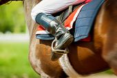 stock photo of thoroughbred  - runing thoroughbred race horse with jokey on it in sunny spring day detail - JPG