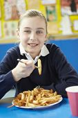 pic of school lunch  - Female Pupil Eating Unhealthy School Lunch - JPG